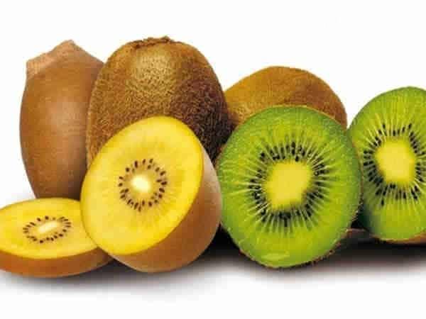 Kiwi - nguồn cung cấp vitamin C tuyệt vời , giúp tăng cường khả năng miễn dịch, tăng sức đề kháng cho cơ thể