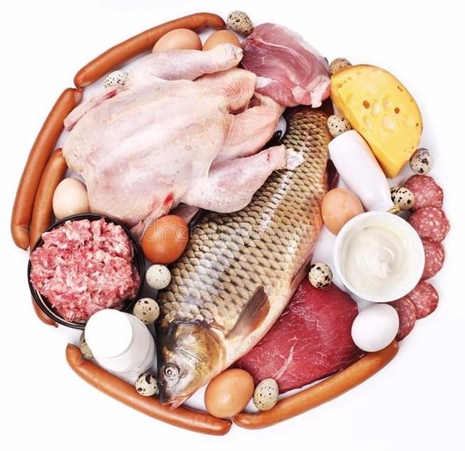 Thịt cá tươi